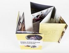 MECA Pre-College Folding Mailer 2013
